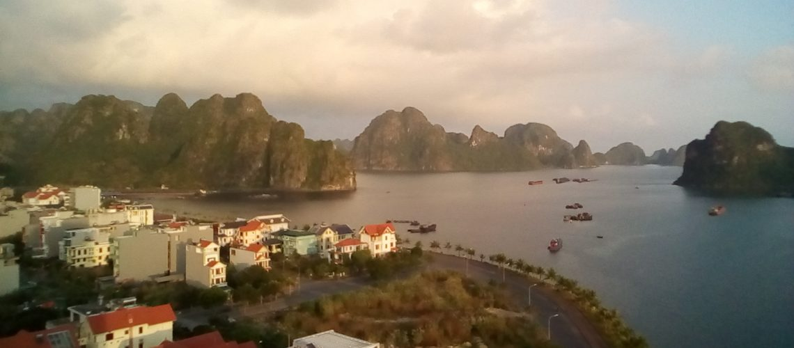 The health of Ha Long Bay